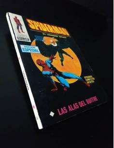 SPIDERMAN 19 VERTICE