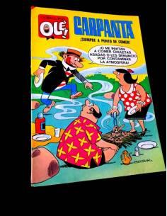 MUY BUEN ESTADO CARPANTA 30...